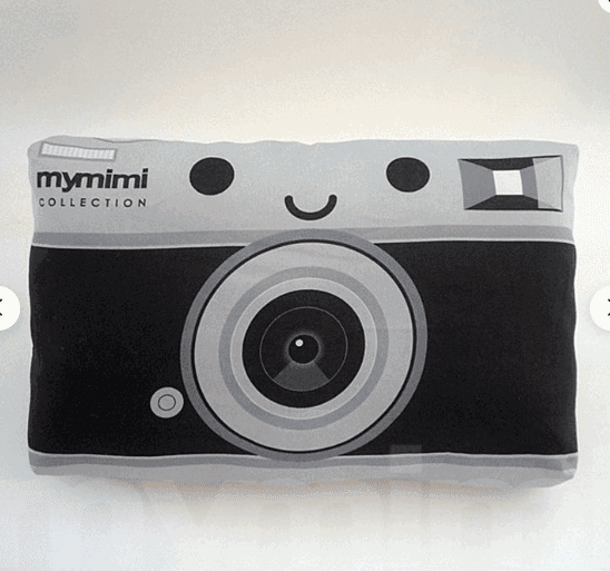 Camer Cushion - Awesome Gift Ideas For Photographers (At All Levels & For All Budgets!)