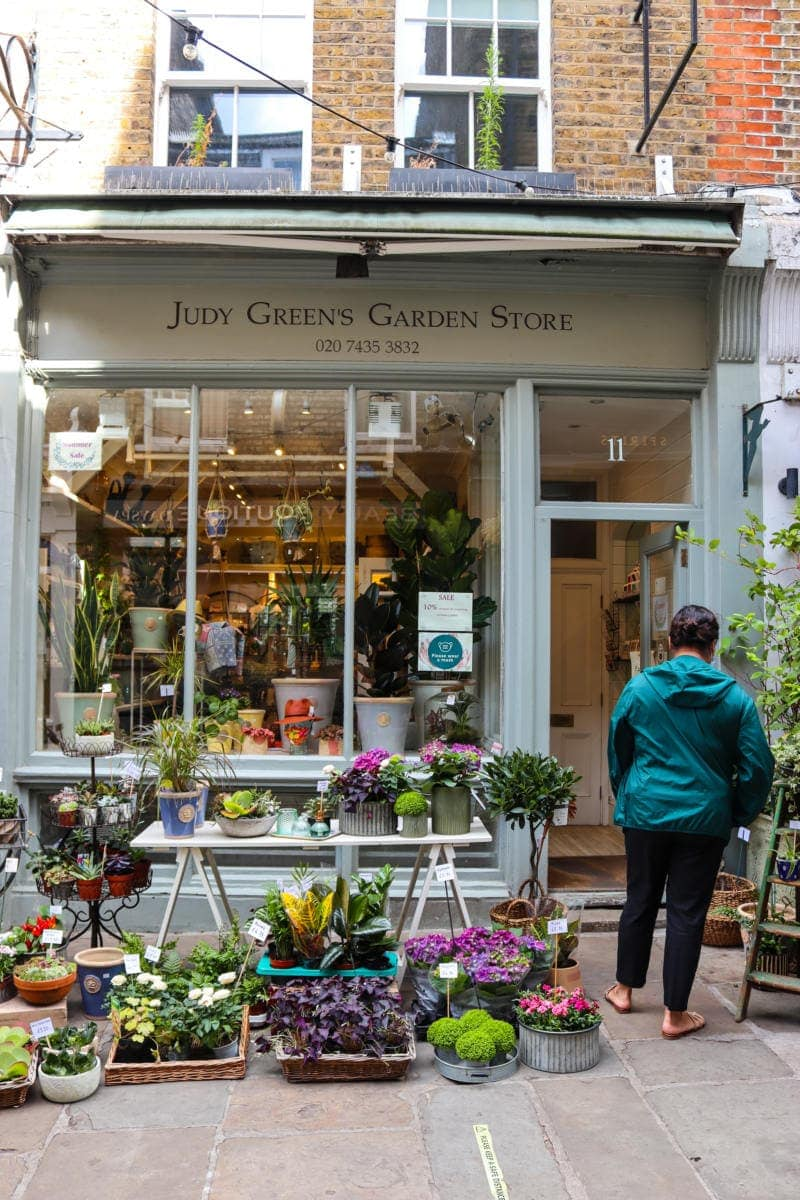 Pretty Flower Shop in Hampstead - Self Guided Walking Tour of Hampstead