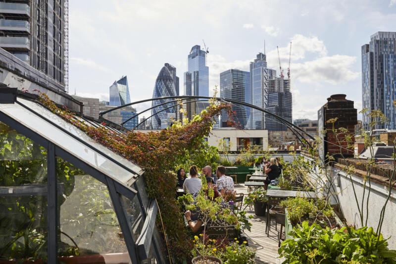 London's Best Rooftop & Outdoor Bars (Image of The Culpeper roof garden)